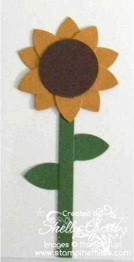 Sunflower_close_up