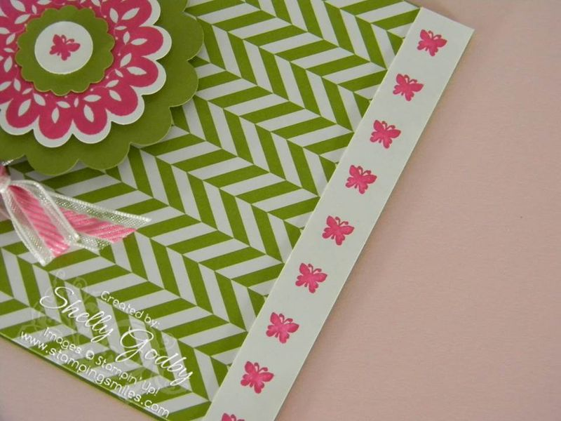 Printed_Petals_Itty_Bitties_border
